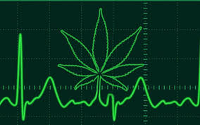CBD cardiac medications and the heart