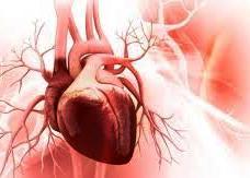 The heart risk score